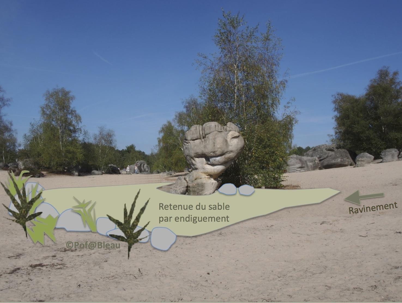 Projet Bilboquet Fontainebleau
